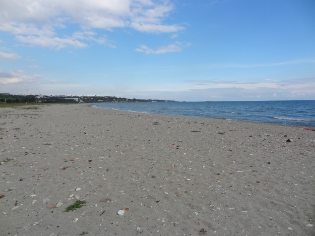 Küçükçekmece Menekşe Plajında Kiralık Büfe